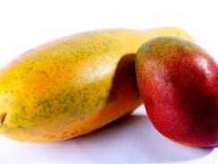 Mango Papaya E-Liquid by Bulk E Juice Review