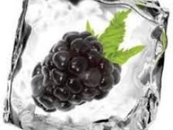 Blackberry Ice E-Liquid by Atomic Dog Vapor Review